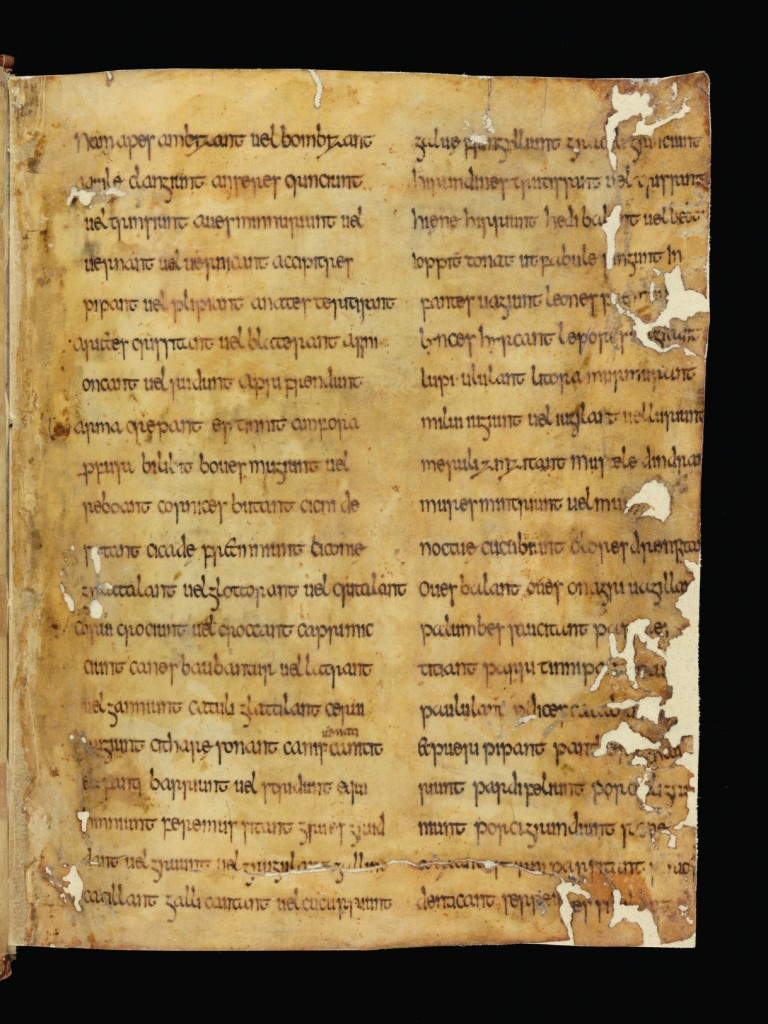 e-codices_zos-pa0032_000a_medium.jpg
